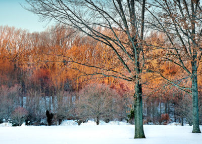 Holmdel Park Winter Sunset