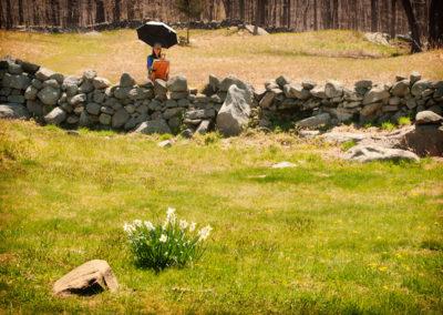Spring Plein Aire