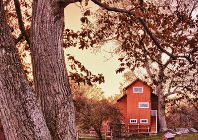 Autumn's Sunset Tone